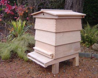 wbc_hive