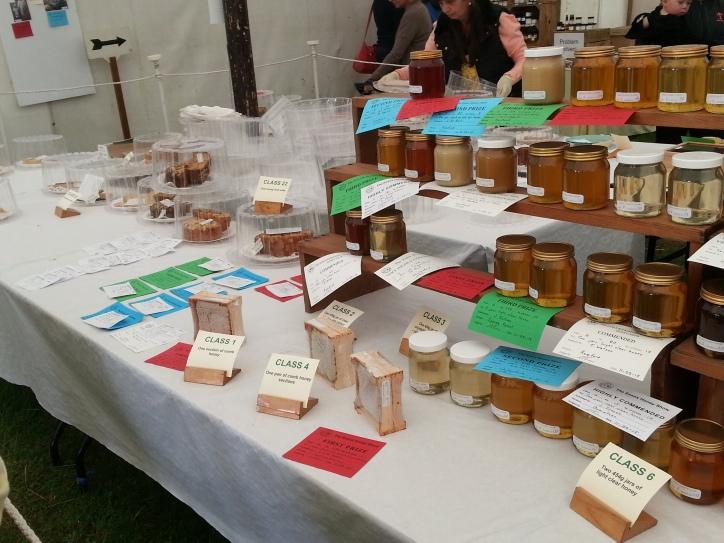 honey comb built into wooden boxes