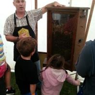 Observation hive